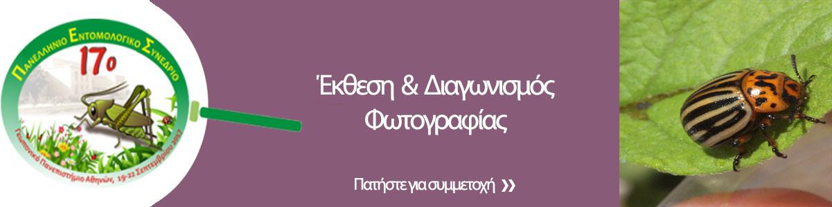 http://www.entsoc.gr/17pes/wp-content/uploads/2017/08/diagwnismos-fwtografias-1.jpg