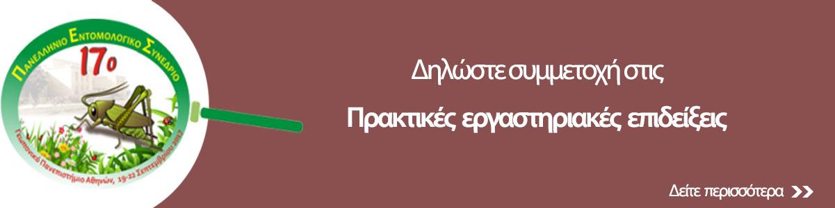 http://www.entsoc.gr/17pes/wp-content/uploads/2017/08/praktikes-epideixeis-1.jpg