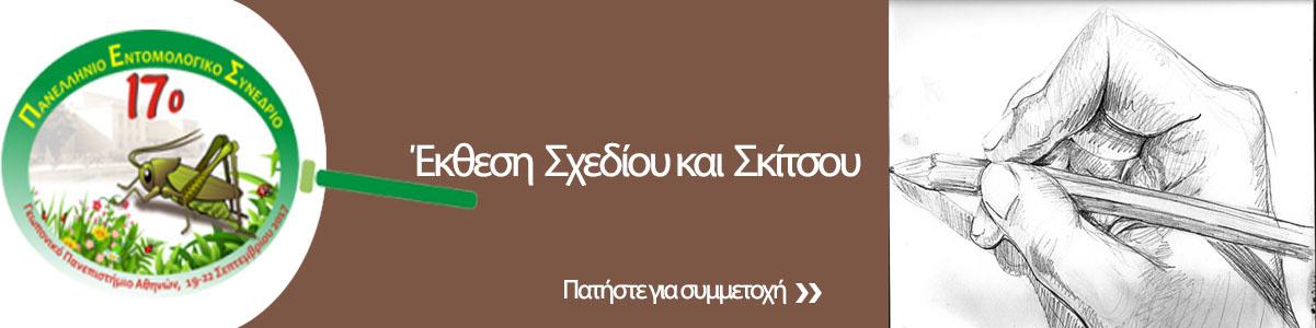 http://www.entsoc.gr/17pes/wp-content/uploads/2017/08/skitso-sxedio-1.jpg